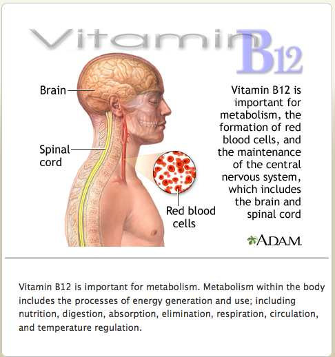 Methylcobalamin Vitamin B12 | aspergers on toast